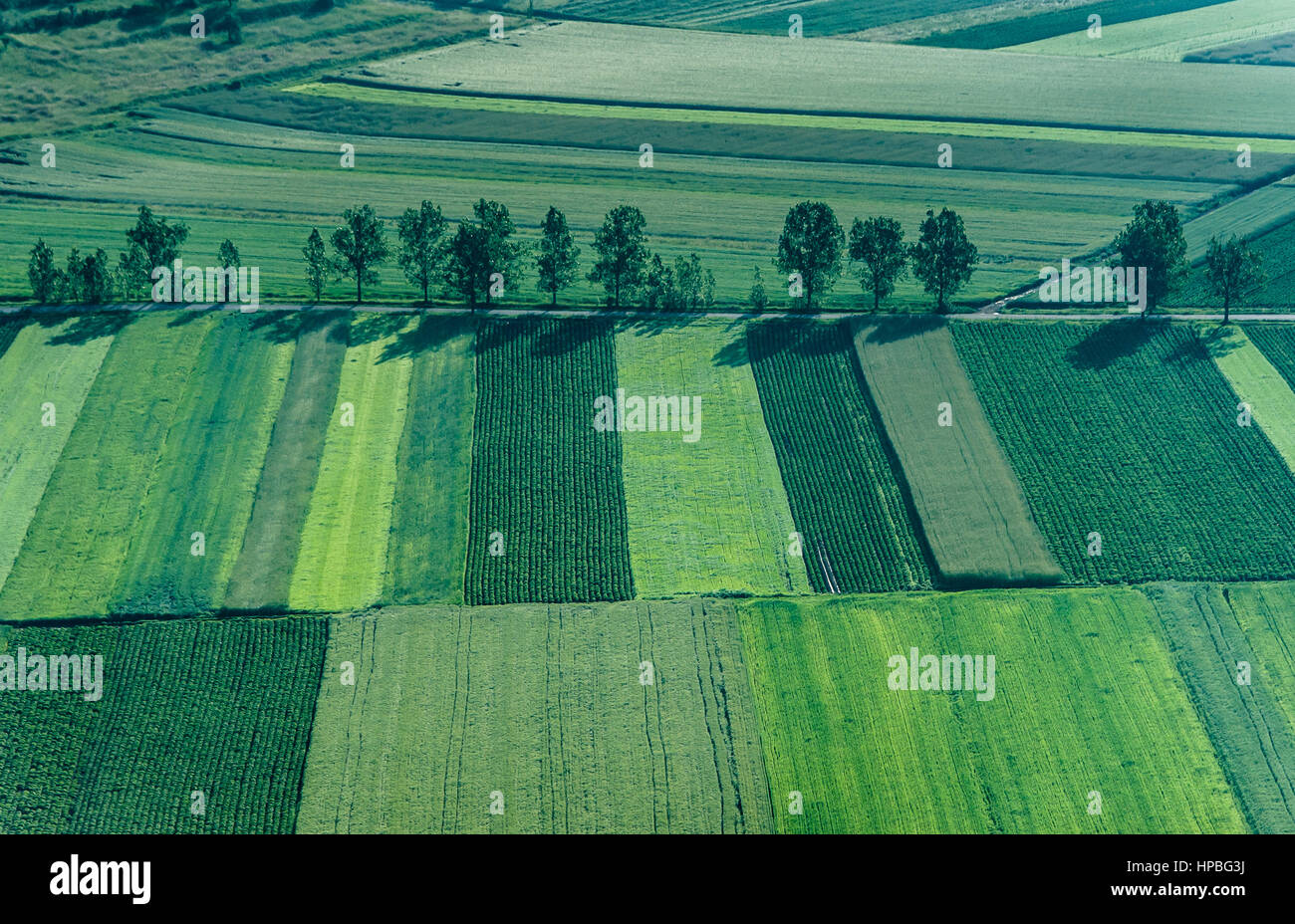 Bird's Eye View of the Fields and Agricultural Parcel. Stock Photo