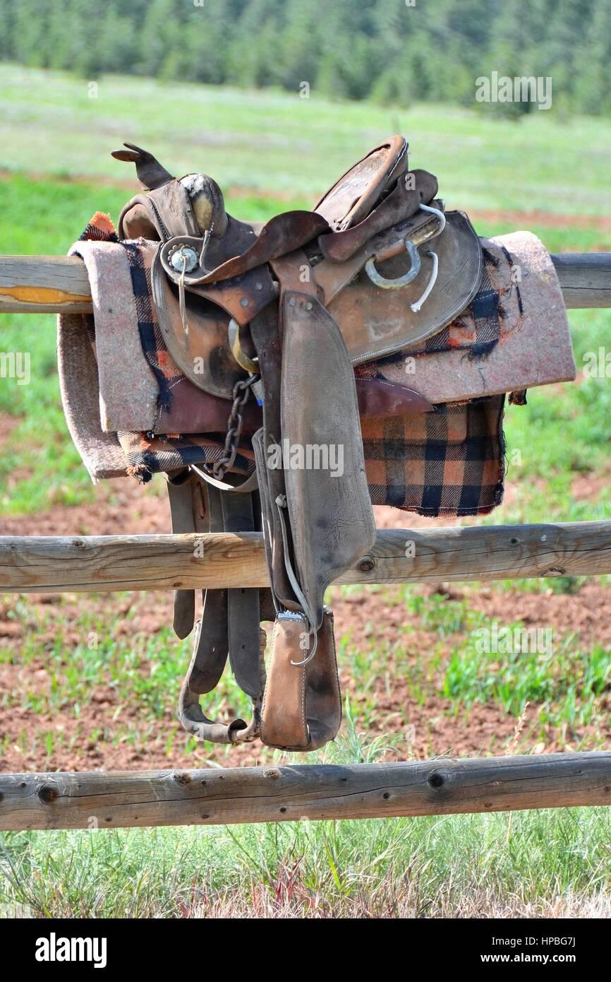 Saddle Horn Stock Photos & Saddle Horn Stock Images - Alamy