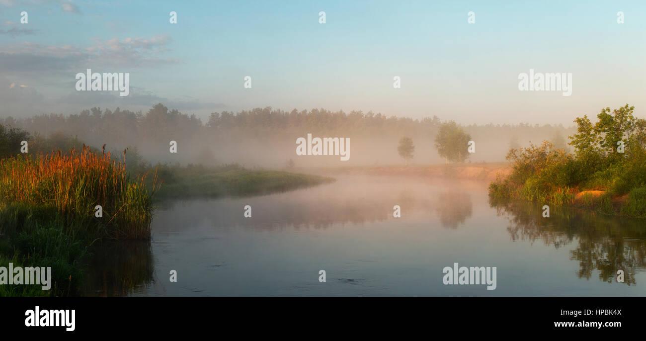 Autumn misty morning on the lake with golden lighten gog Stock Photo