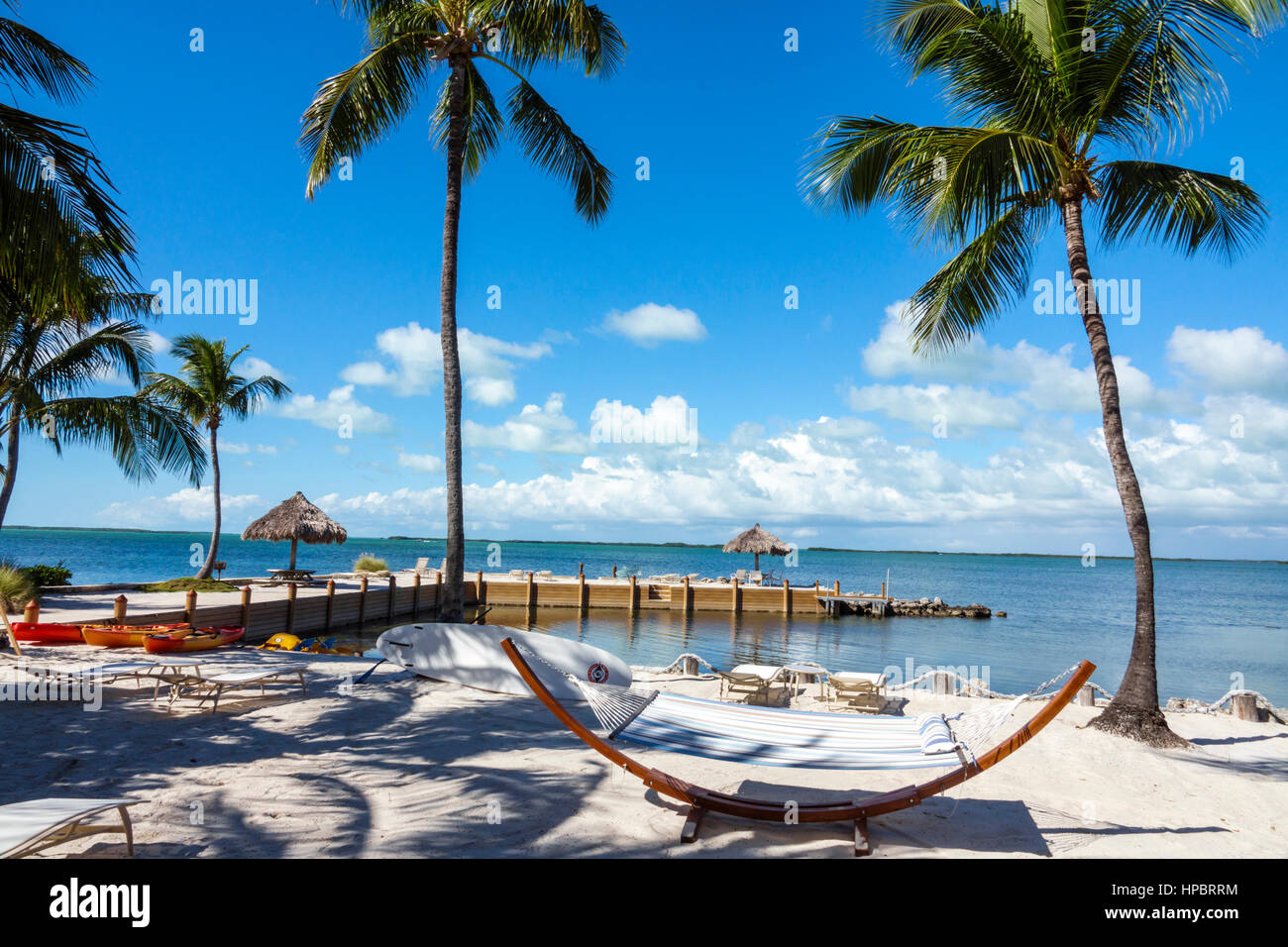 islamorada chatrooms Preview them on our website & chat online or let our rental managers help you find your ideal vacation spot weekly & monthly rentals florida rentalscom- islamorada.