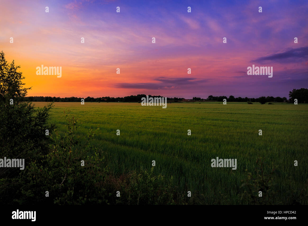 A colorful sunset in northern Germany - Stock Image