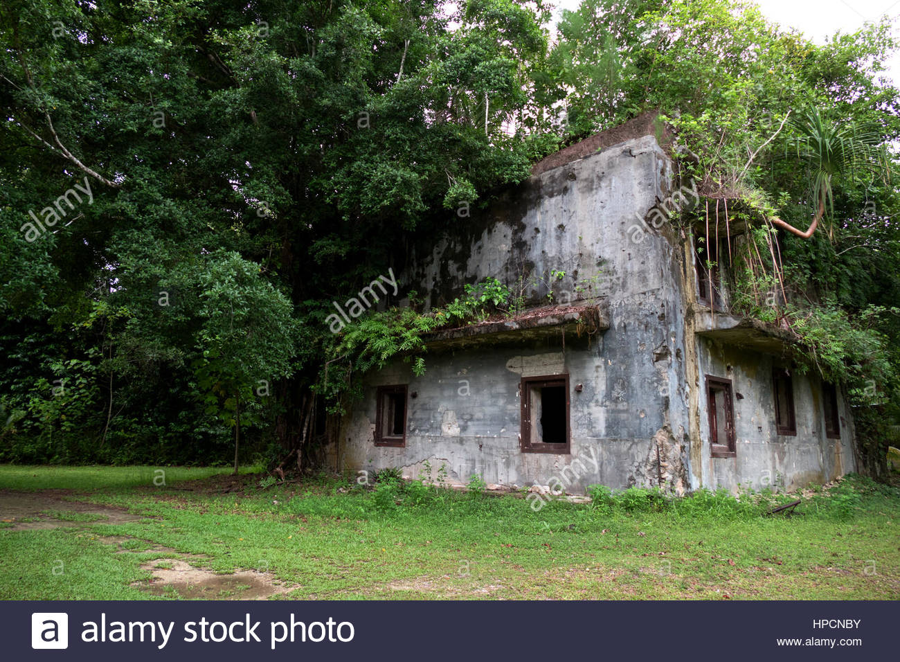 Old military building in jungle. Battle of Peleliu 1944 (Operation Stalemate II) fought between the US and Japan - Stock Image