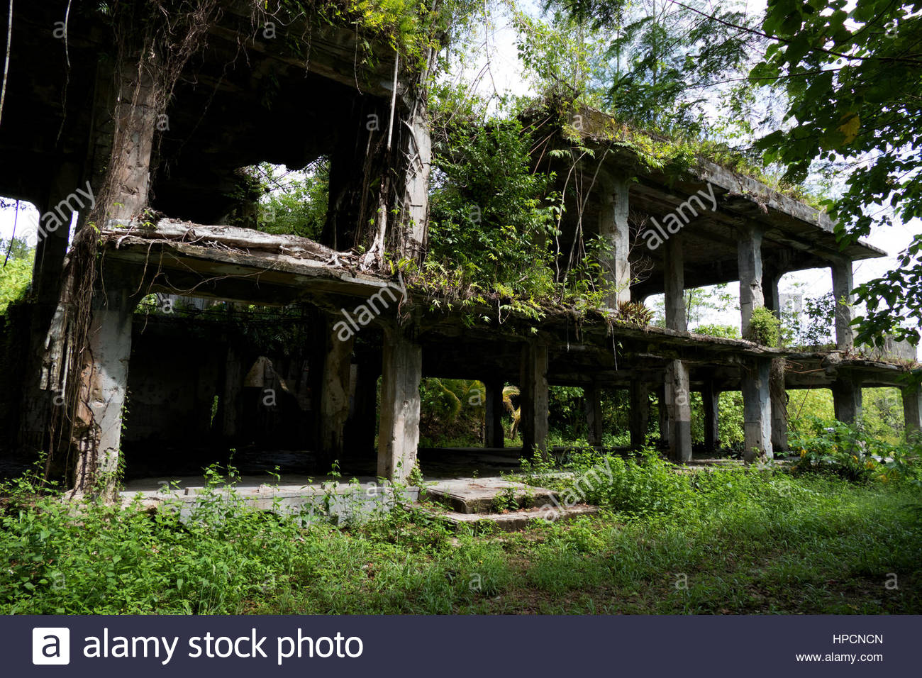 Japanese military headquarters. Battle of Peleliu 1944 (Operation Stalemate II) fought between the US and Japan - Stock Image