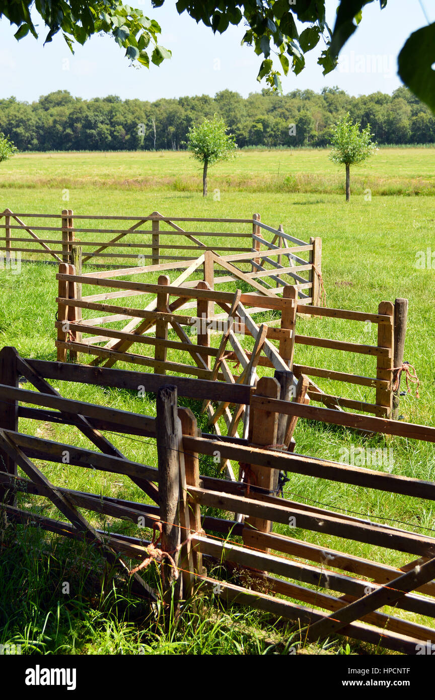 A tangle of wooden fences in a pasture near a farm. - Stock Image