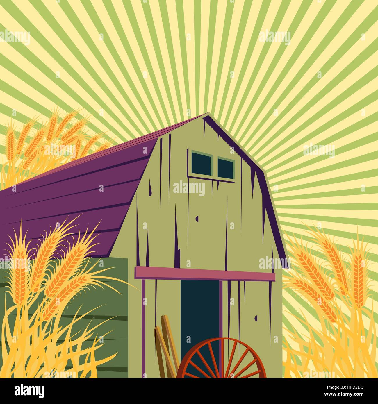 Farm rural scene with barns and golden wheat field. Organic food concept for any design. - Stock Vector