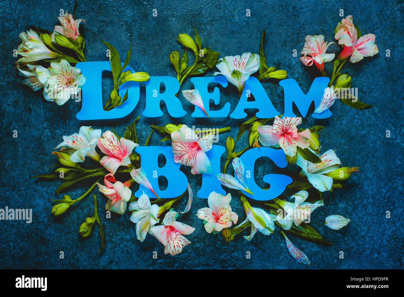 Dream big lettering with white flowers and leaves on a dark marble dream big lettering with white flowers and leaves on a dark marble background letters are made from pastel paper mightylinksfo