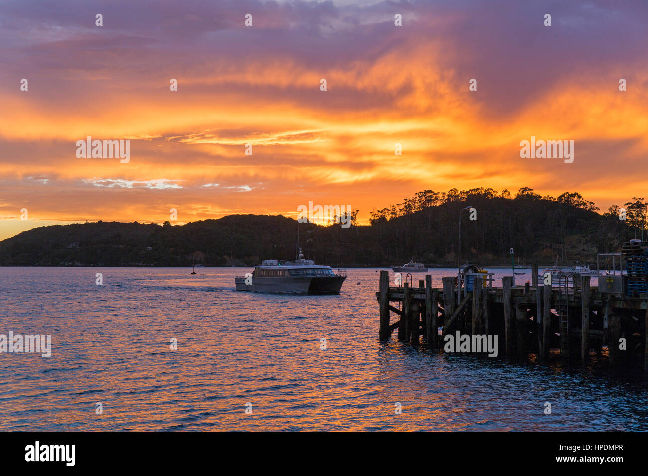 Oban, Stewart Island, Southland, New Zealand. Colourful sky reflected in water at dawn, Halfmoon Bay, ferry approaching - Stock Image