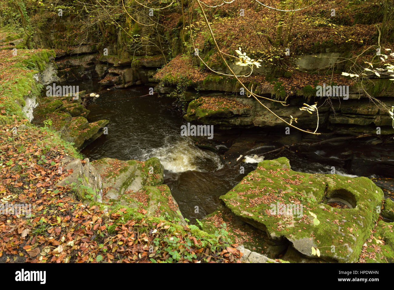 The Taf Fechan River Swirling in Limestone Carved into Curved Shapes Stock Photo