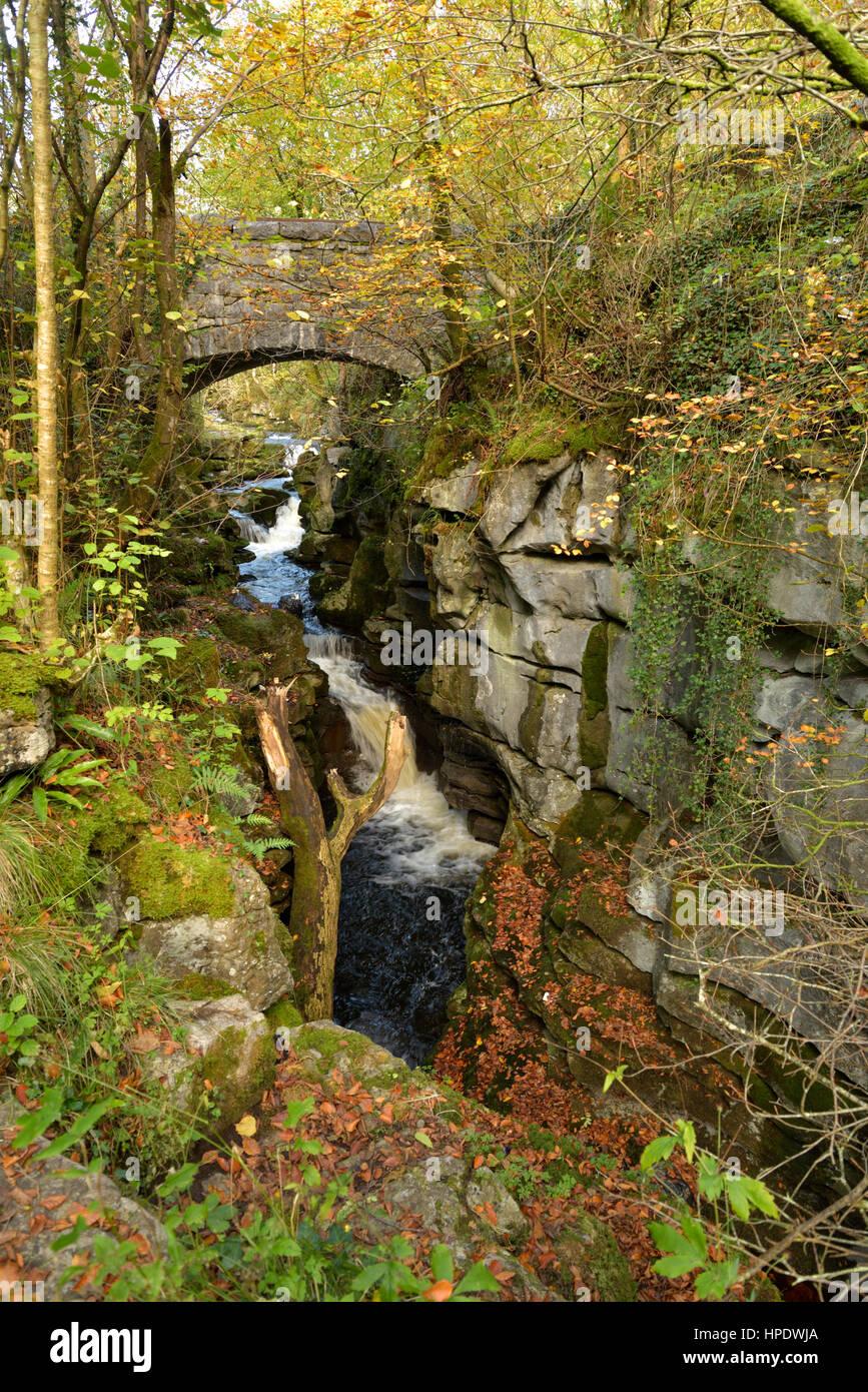 The Taf Fechan Tumbles through a Limestone Gorge below the Pont-sarn Bridge, Merthyr Tydfil Stock Photo