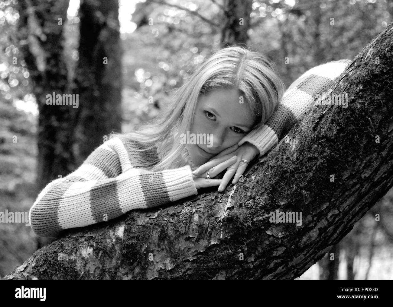 Beautiful young woman in jeans and a jumper in the new forest england stock