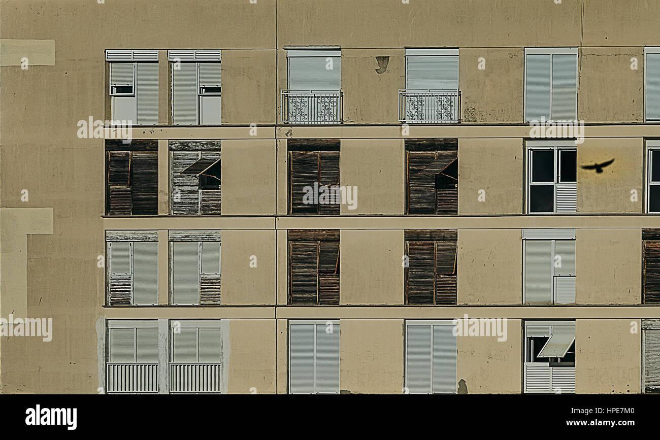 Zadar, Bird Reflection on Building - Stock Image
