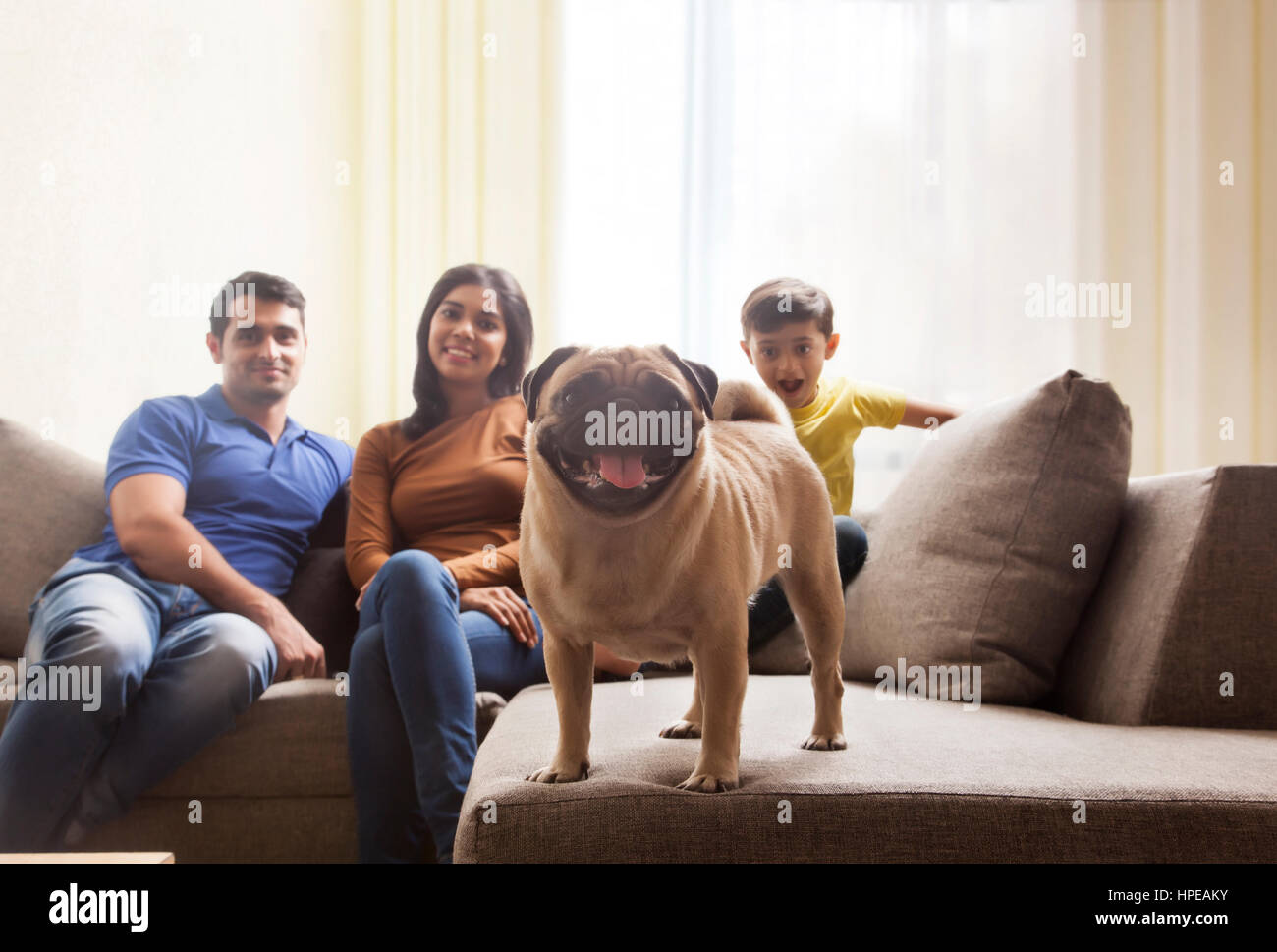 Family with son and pug on sofa - Stock Image