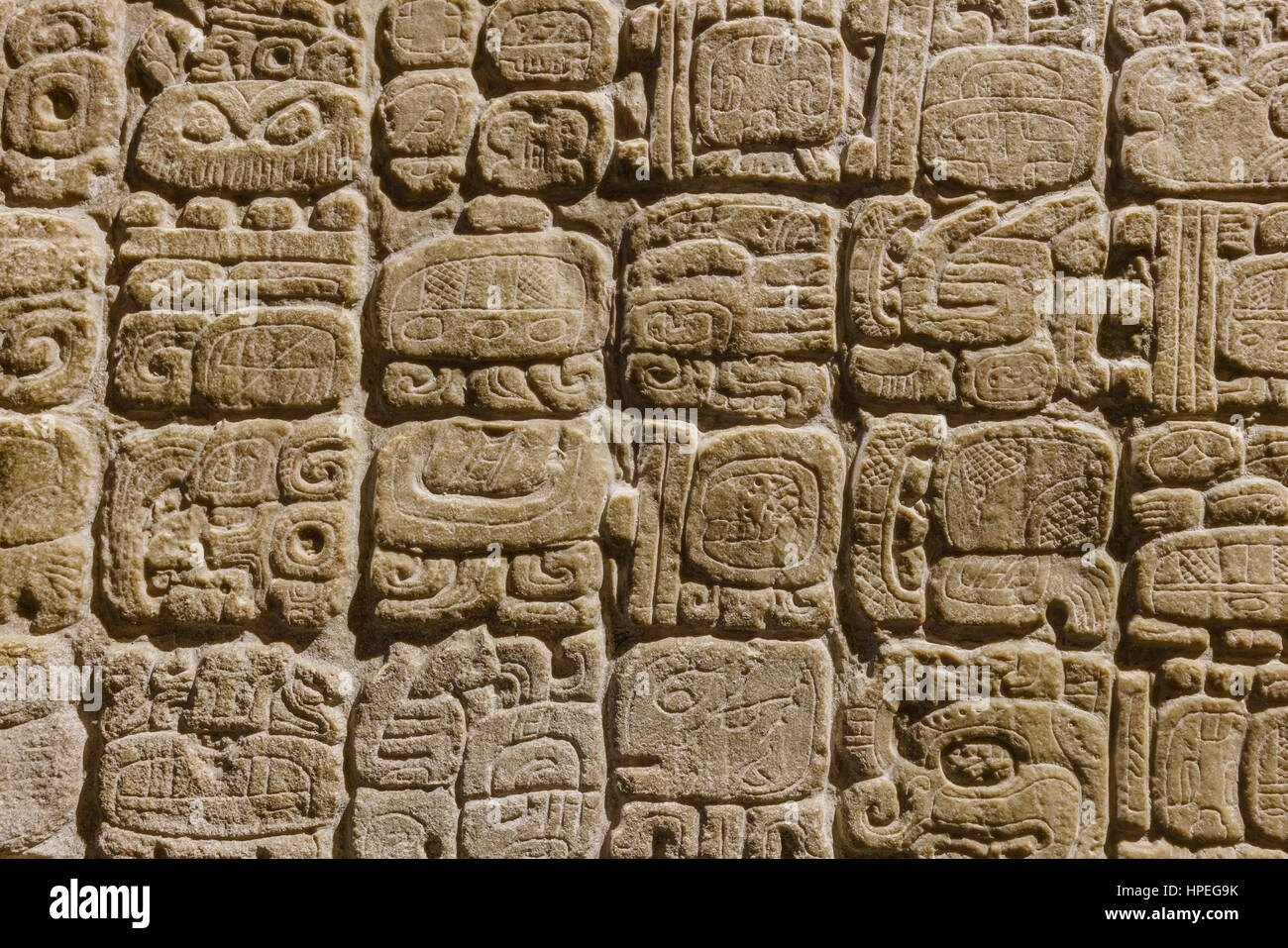 Mexico City, FEB 16: National Museum of Anthropology (Museo Nacional de Antropologia, MNA) on FEB 16, 2017 at Mexico - Stock Image