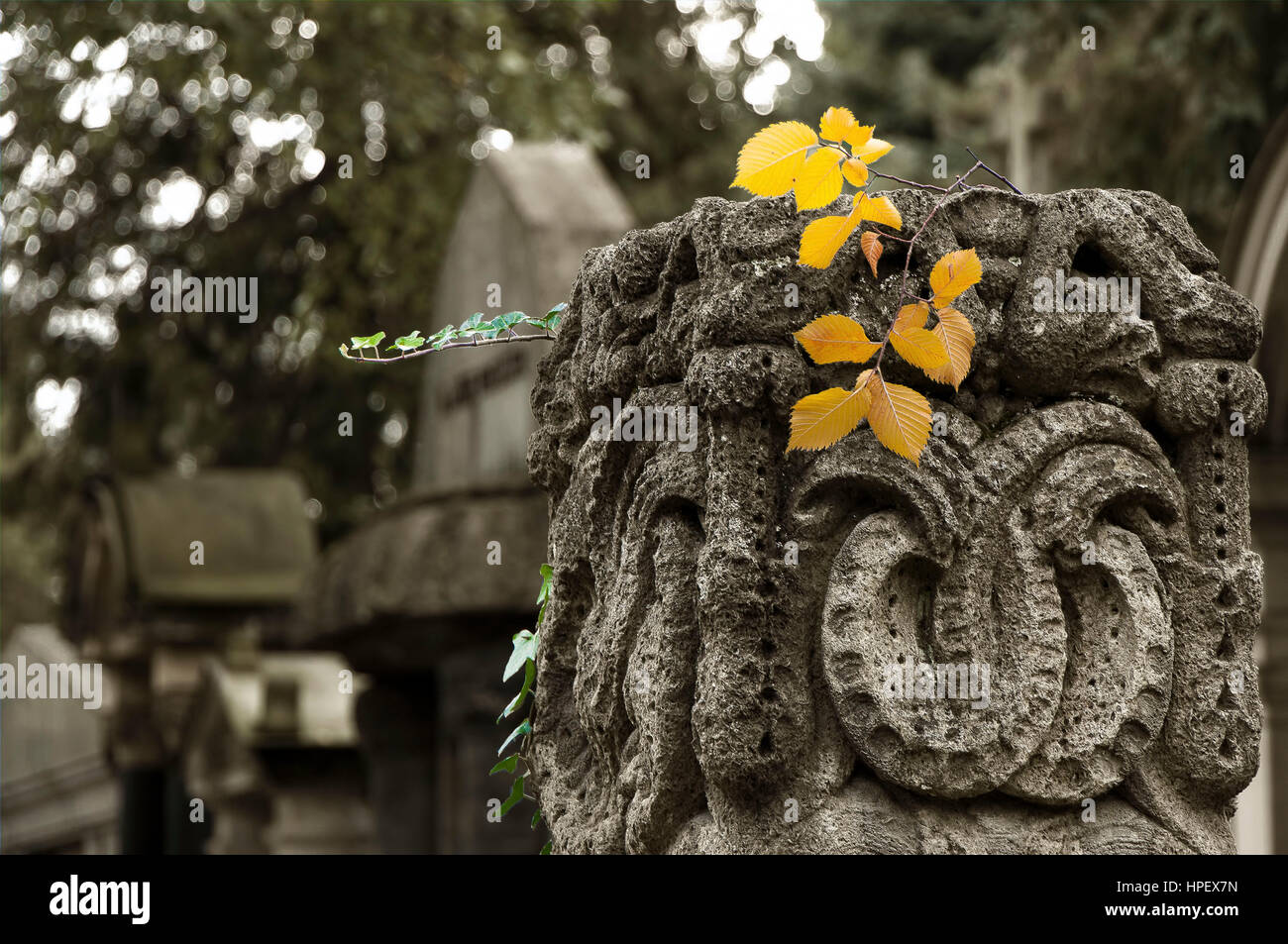 Old grave stone at cemetery in sepia tones, - Stock Image