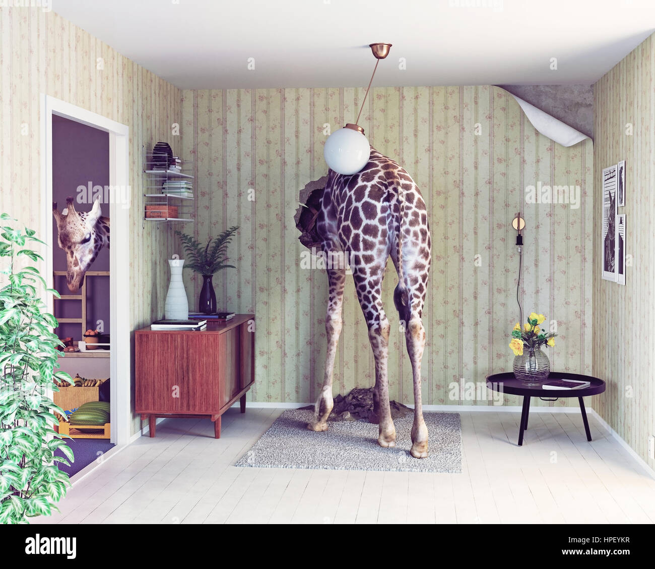 giraffe in the living room. creative concept. Photo and cg elements combination - Stock Image