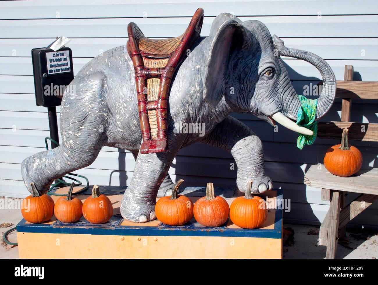 Mister Ed's Elephant Museum in Orrtanna Pennsylvania - Stock Image