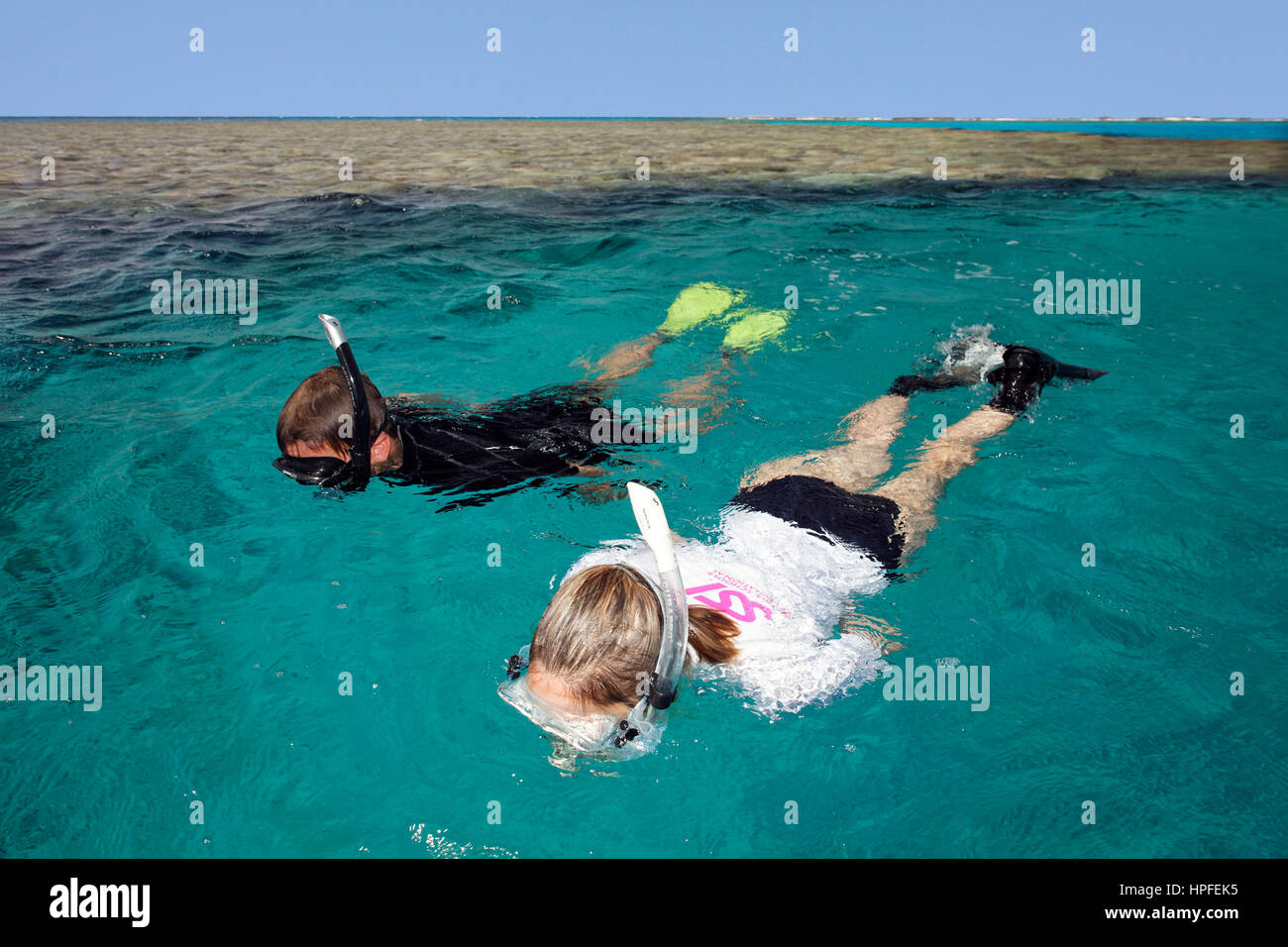 Man, Woman snorkeling, Coral Reef, Red Sea, Egypt - Stock Image