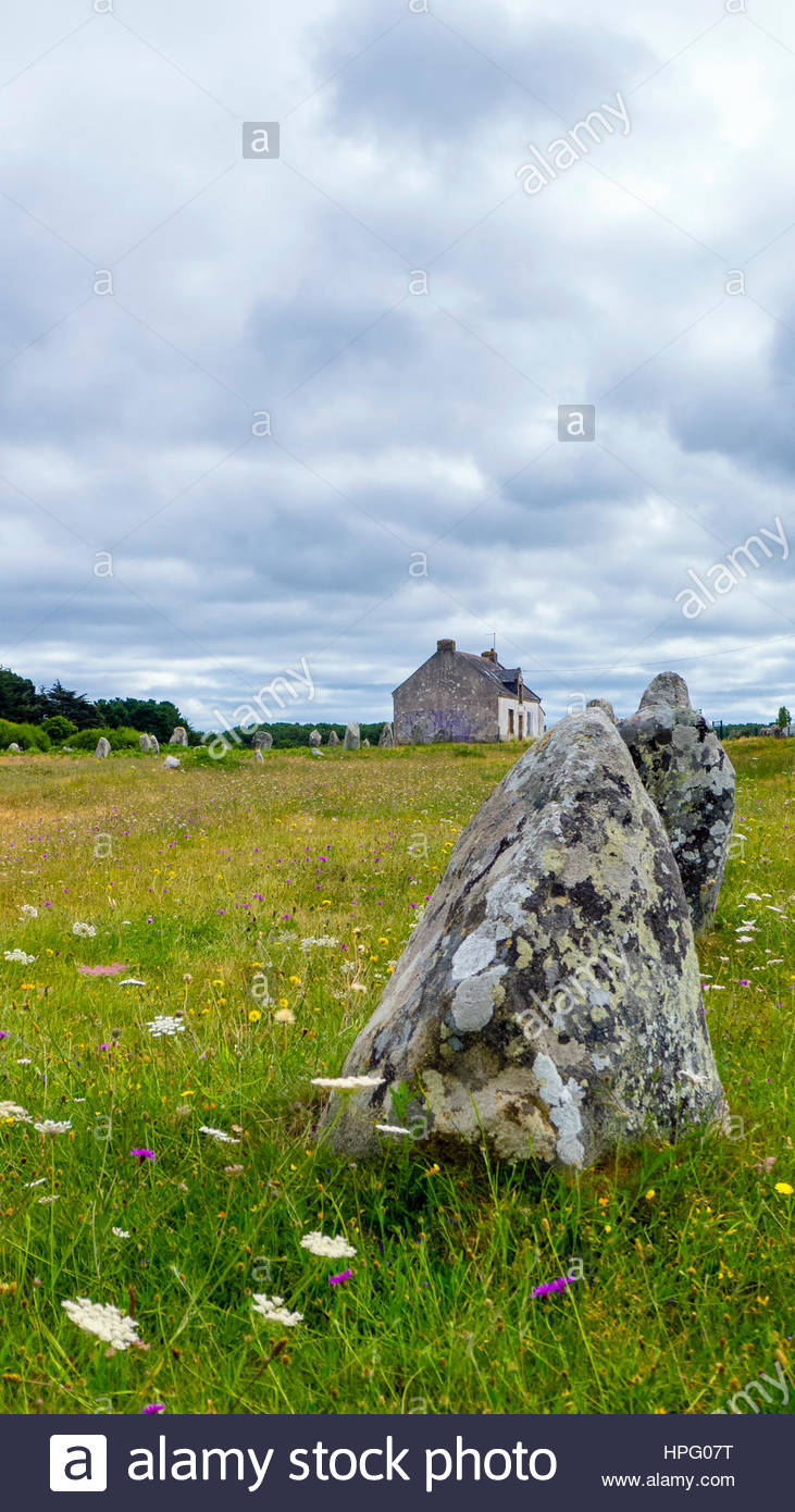 France, Brittany (Bretagne), Morbihan department, Carnac. Neolithic standing stones at Alignements de Carnac (Carnac Stock Photo