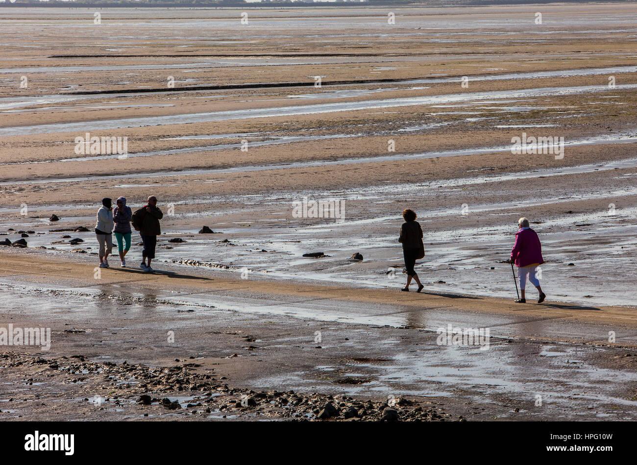 Passage du gois, Ile de noirmoutier, dept Loire-Atlantique, France, Europe - Stock Image