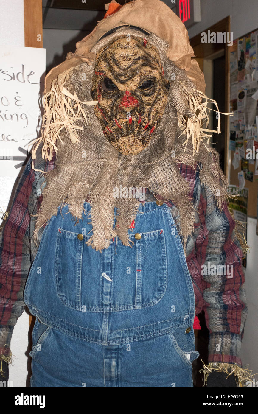 Adult wearing a scary Halloween farmers costume with bibs beard and grass hair. Cumberland Wisconsin WI USA - Stock Image