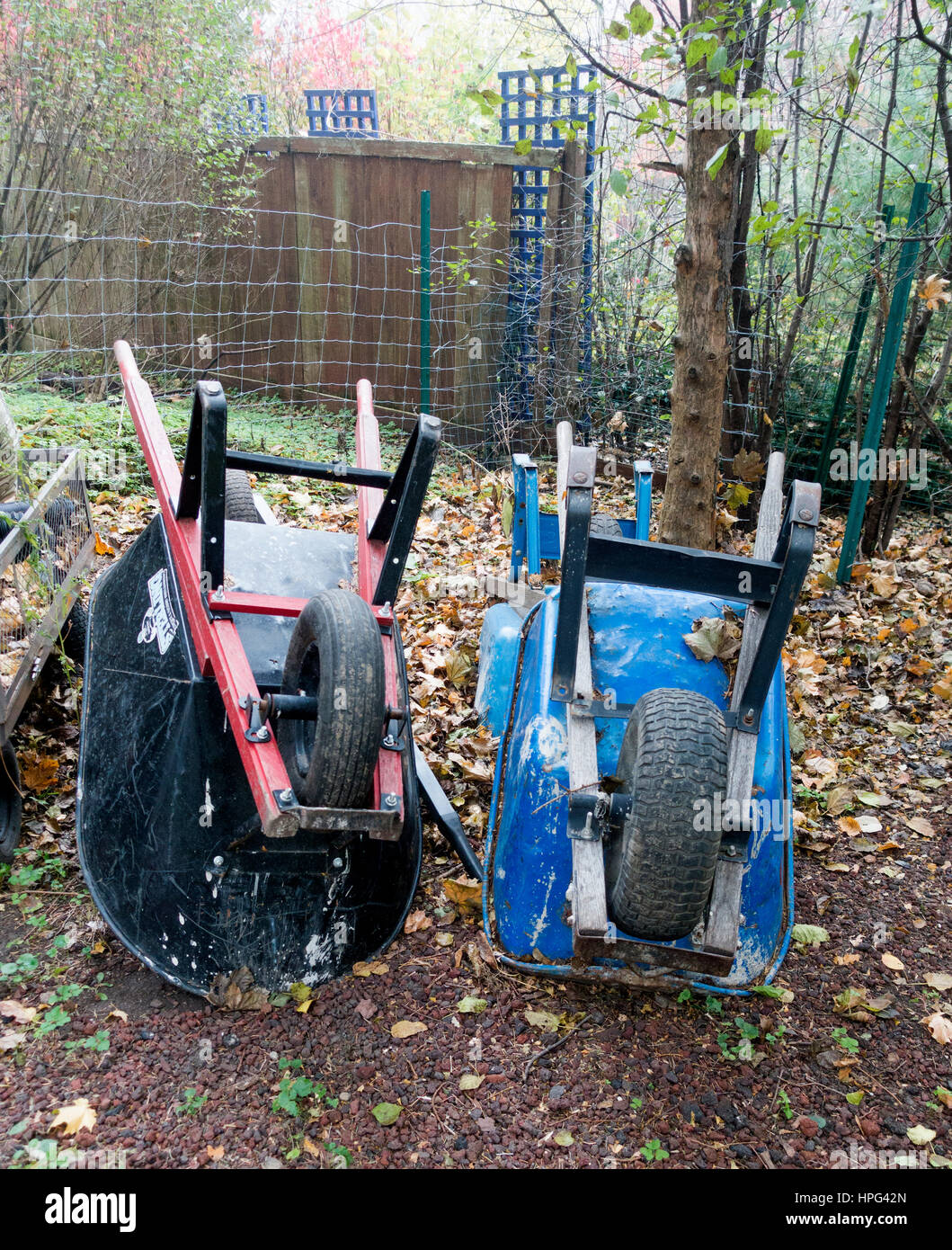 Pair of upside-down wheelbarrows in backyard of home. Downers Grove Illinois IL USA - Stock Image