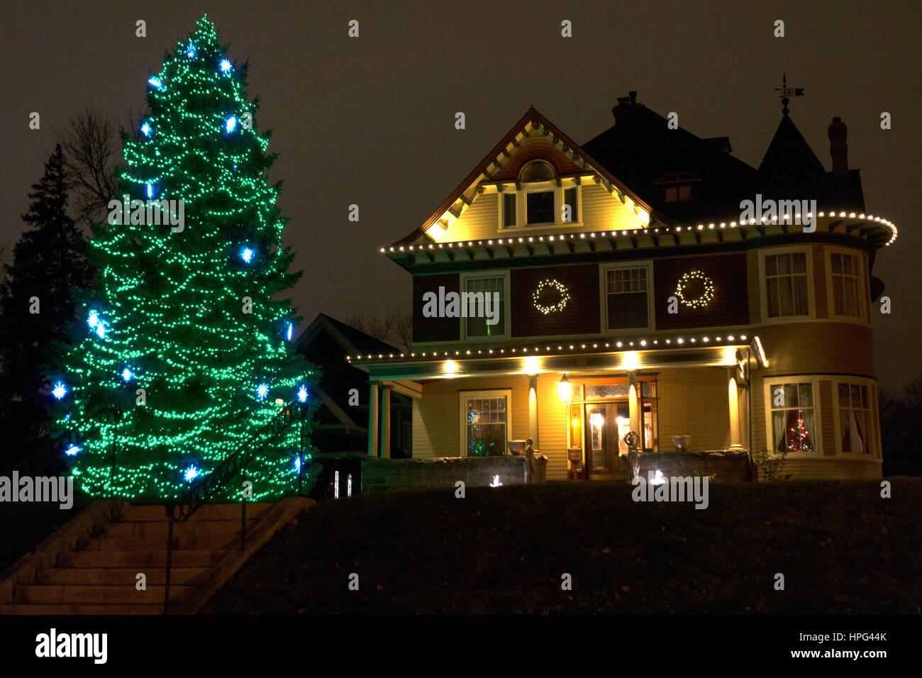 Christmas Tree Decorated With Blue And Green Lights Very Tall Next