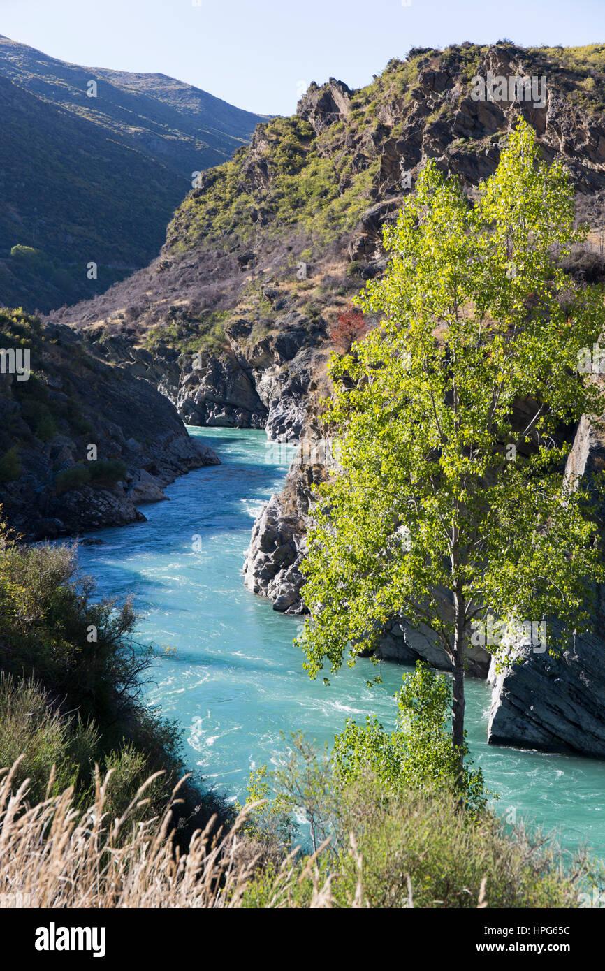 Cromwell Falls : The Creek