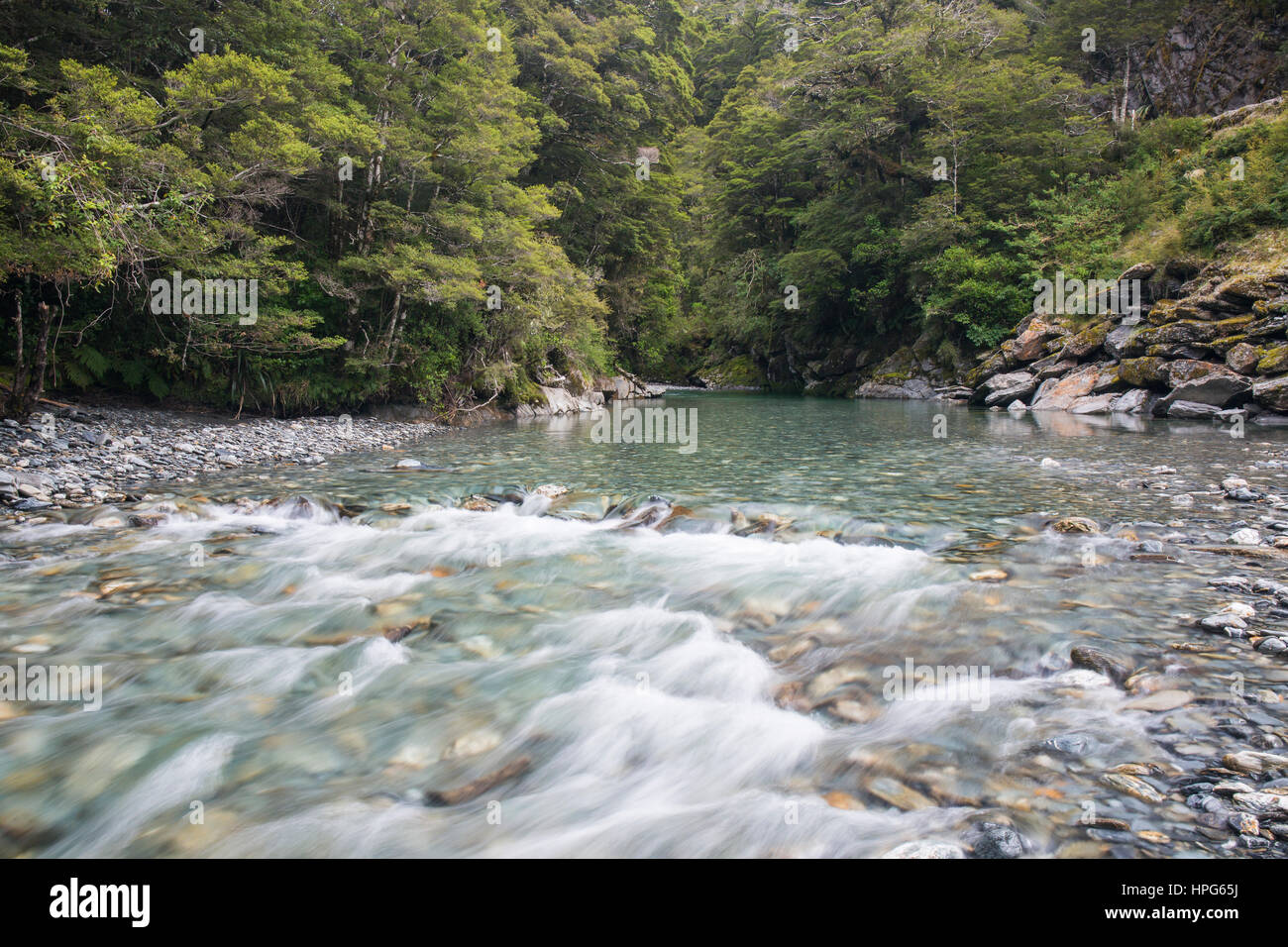 Haast Pass, Mount Aspiring National Park, West Coast, New Zealand. The Haast River near Fantail Falls. - Stock Image