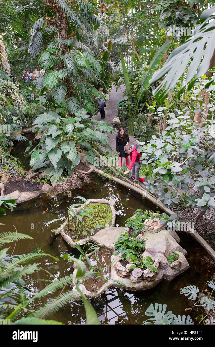 France. Paris 5th district. The Jardin des plantes (Garden of Plants). The Great Greenhouses. The tropical greenhouse - Stock Image