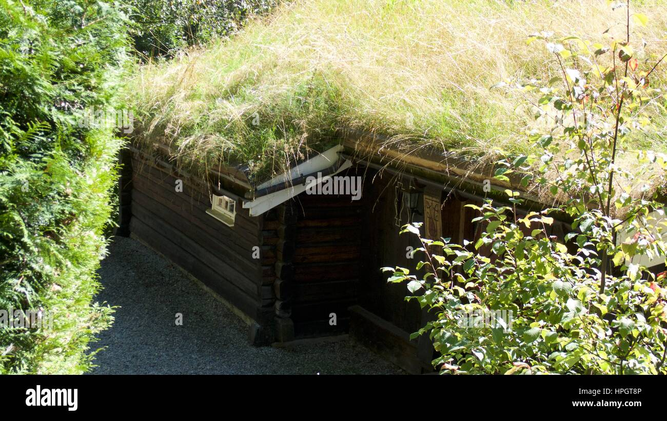 High angle view of wooden building exterior with grass roof, Chamonix, Mont Blanc, France - Stock Image