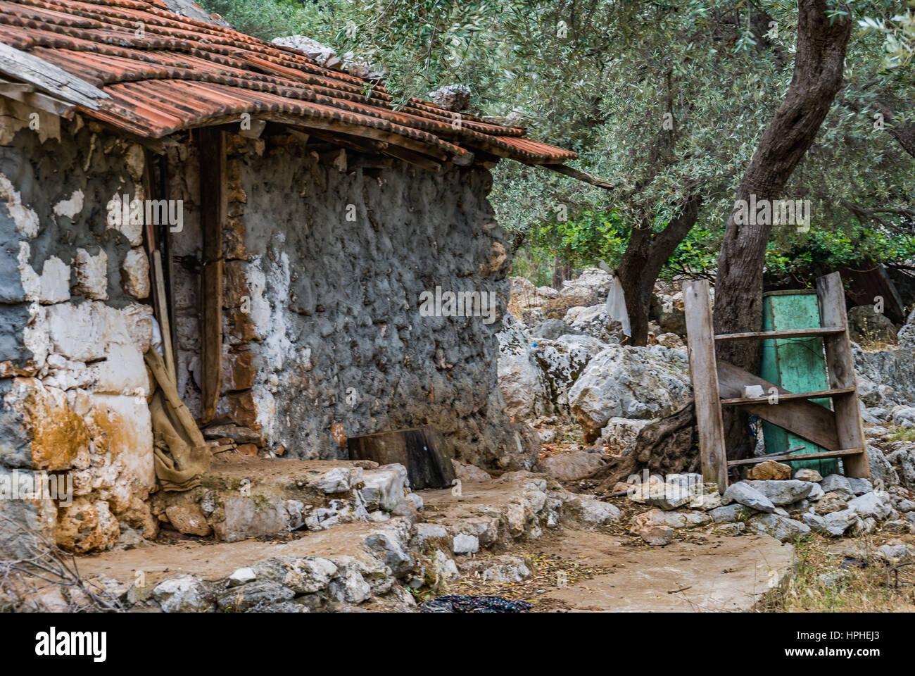 Abandoned Stone House On The Mountainbookshelf In Garden Dag Basinda Terkedilmis Ev Bahcesinde Ahsap Kitaplik