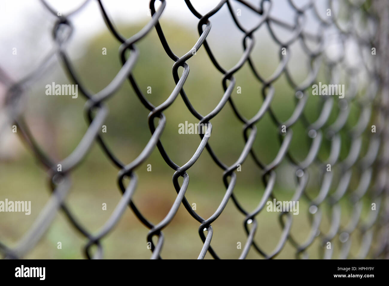 Detail of twisted wire fence. Shallow depth of field Stock Photo ...