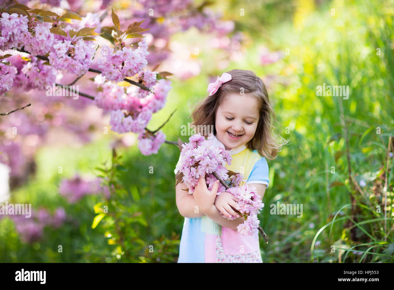 Little Happy Girl Playing Under Blooming Cherry Tree With Pink Stock
