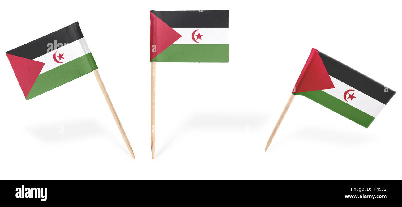 Small cocktail flags of Western Sahara in different positions isolated on white.(series) . Also easy to use as a - Stock Image