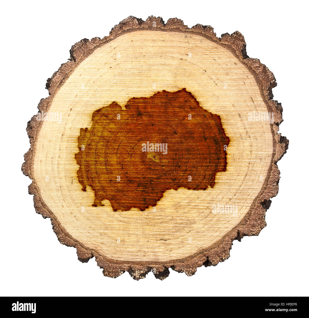 A slice of oak and the shape of Macedonia branded onto .(series) - Stock Image