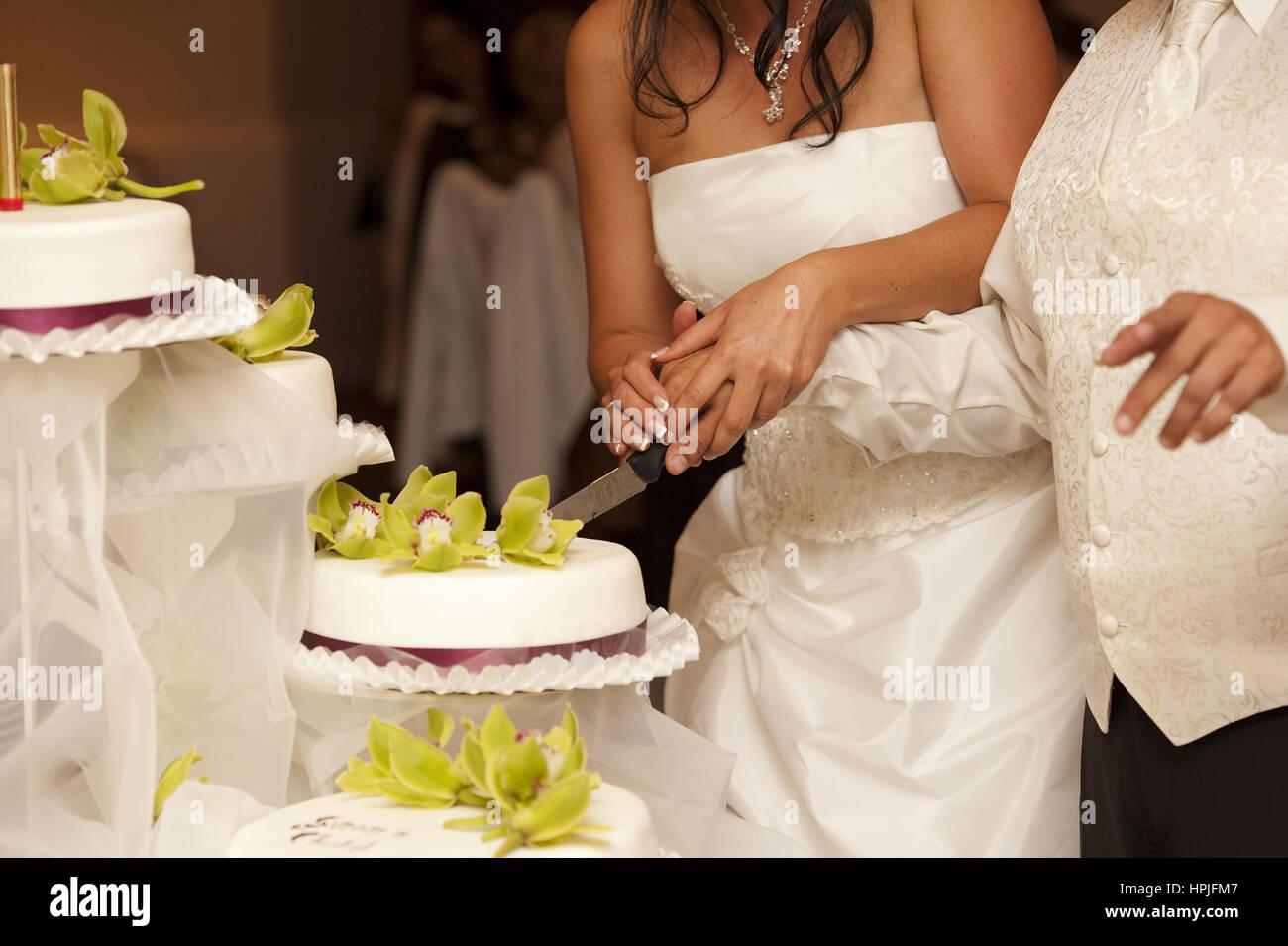 Brautpaar Schneidet Hochzeitstorte An Bridal Couple Cutting