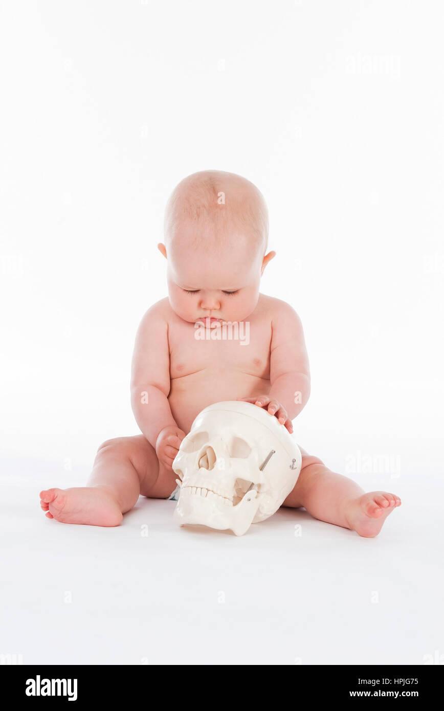 Model released , Baby, 10 Monate, mit menschlichem Schaedel - baby ...