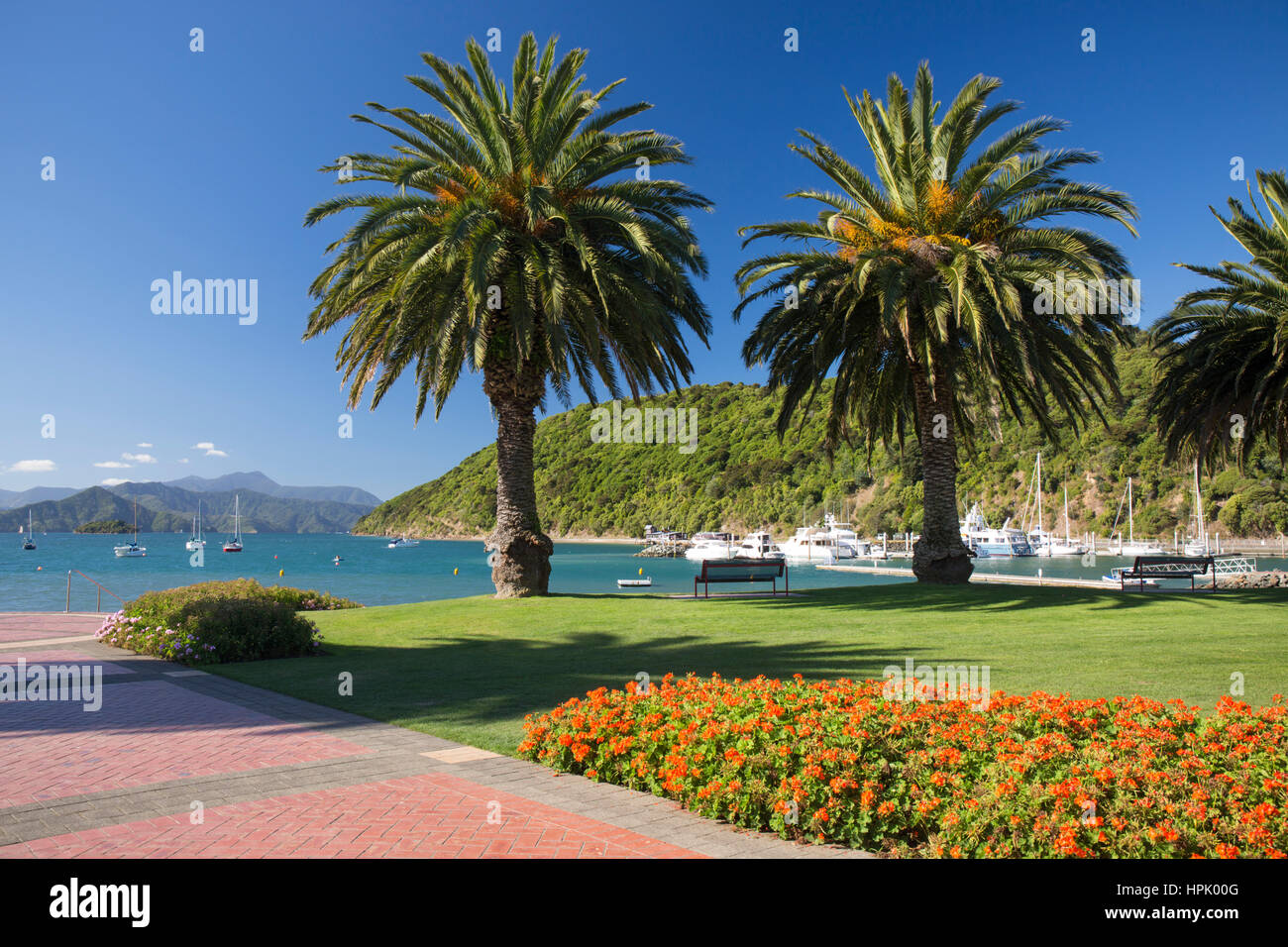Picton, Marlborough, New Zealand. View from gardens to the palm-lined waterfront of Picton Harbour and distant hills - Stock Image
