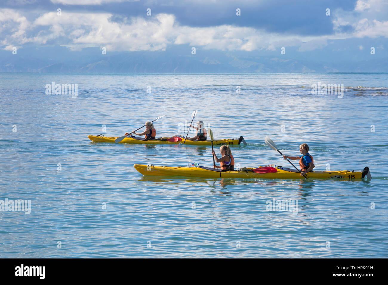 Marahau, Tasman, New Zealand. Kayakers paddling across the tranquil waters of Sandy Bay towards Abel Tasman National - Stock Image