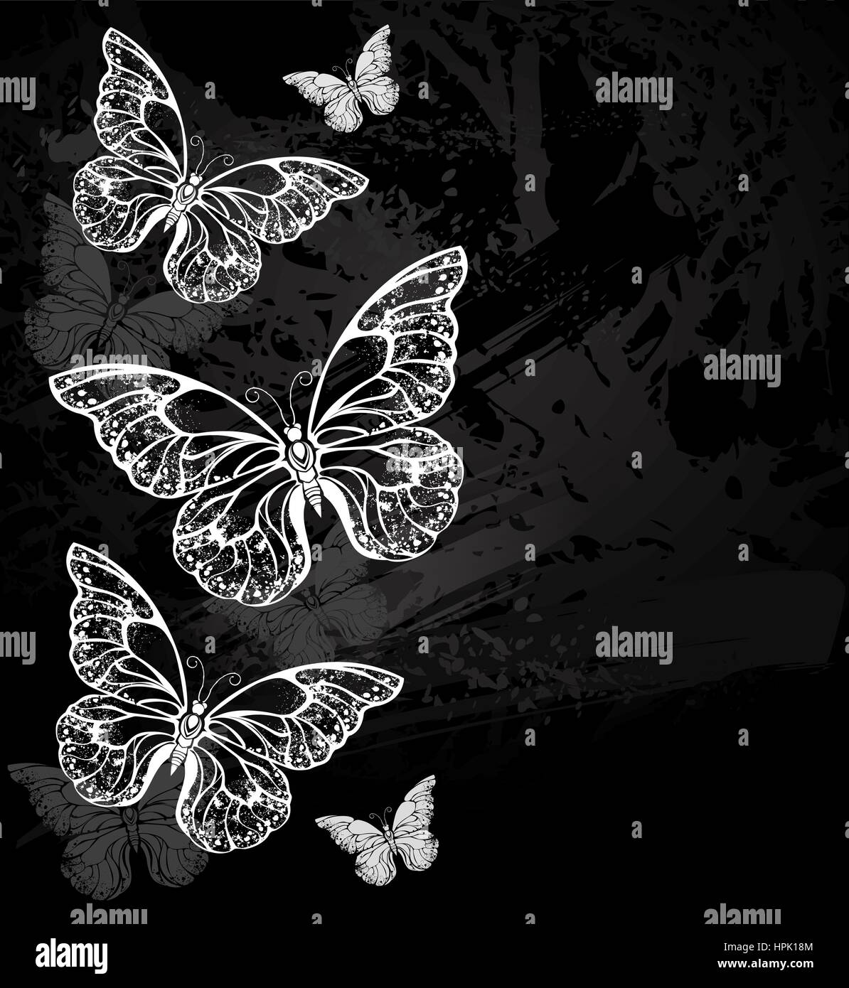 painted white chalk composition of several morpho butterflies on a