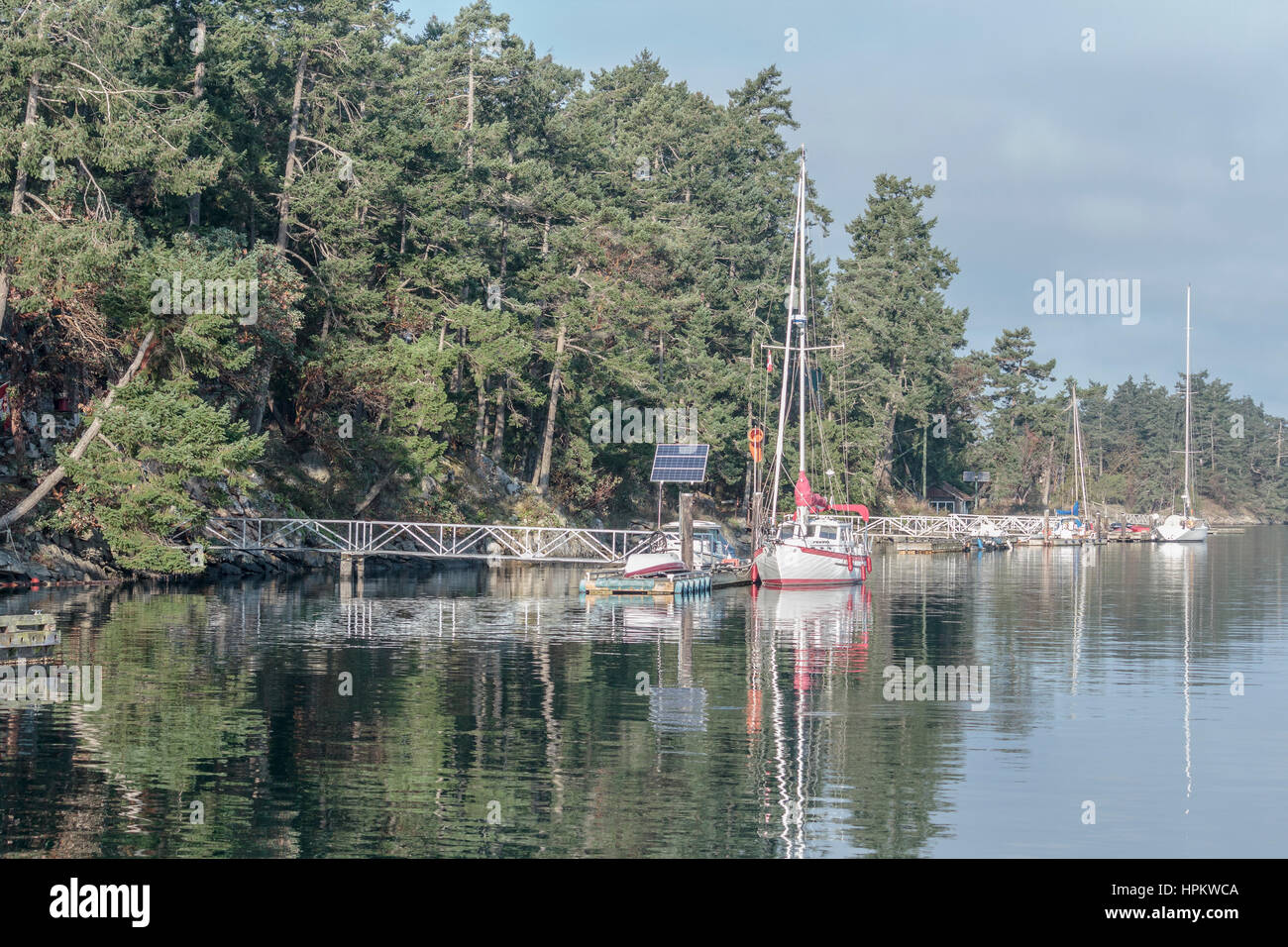 Morning light in early autumn in the Gulf Islands: docks, boats and solar panels line the shore of a small water - Stock Image