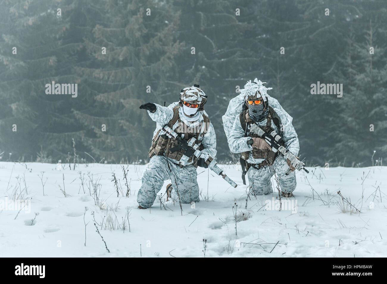 Action above the arctic circle - Stock Image
