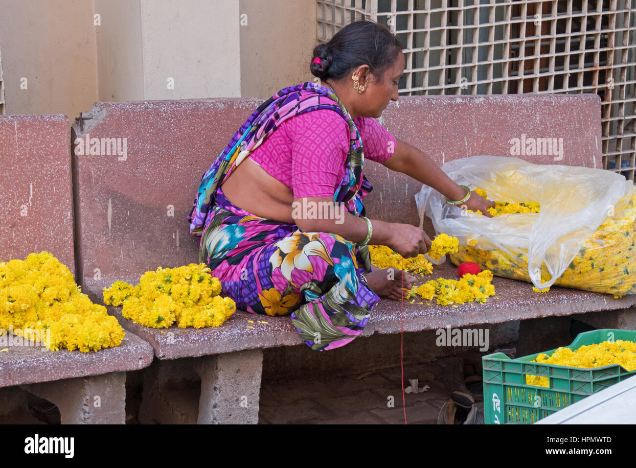 Unidentified woman in an Ahmedabad backstreet making garlands from marigold flowers for sale to worshippers as offerings - Stock Image