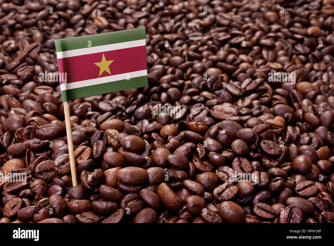 Flag of Suriname sticking in roasted coffee beans.(series) - Stock Image
