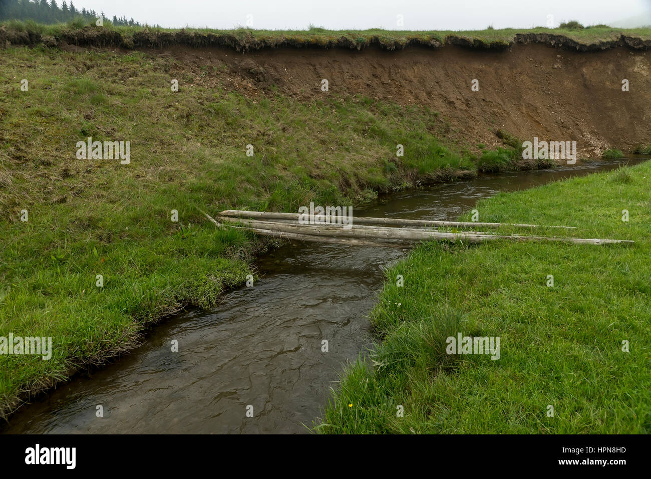 Felled trees as makeshift bridge over a small river Stock Photo