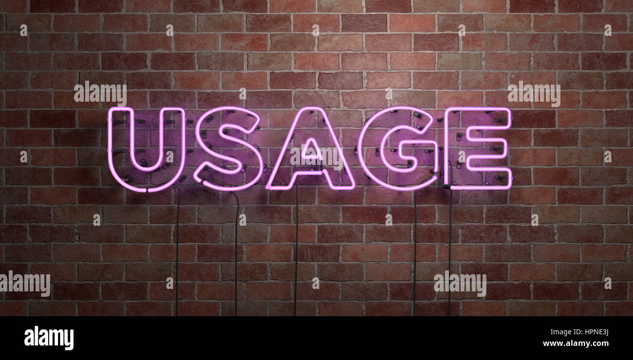 USAGE - fluorescent Neon tube Sign on brickwork - Front view - 3D rendered royalty free stock picture. Can be used - Stock Image