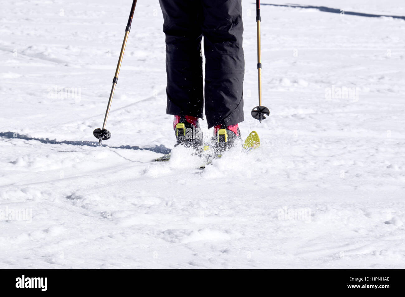 WINTERBERG, GERMANY - FEBRUARY 15, 2017: The legs of a downhill skier with perfect parallel style at Ski Carousel - Stock Image