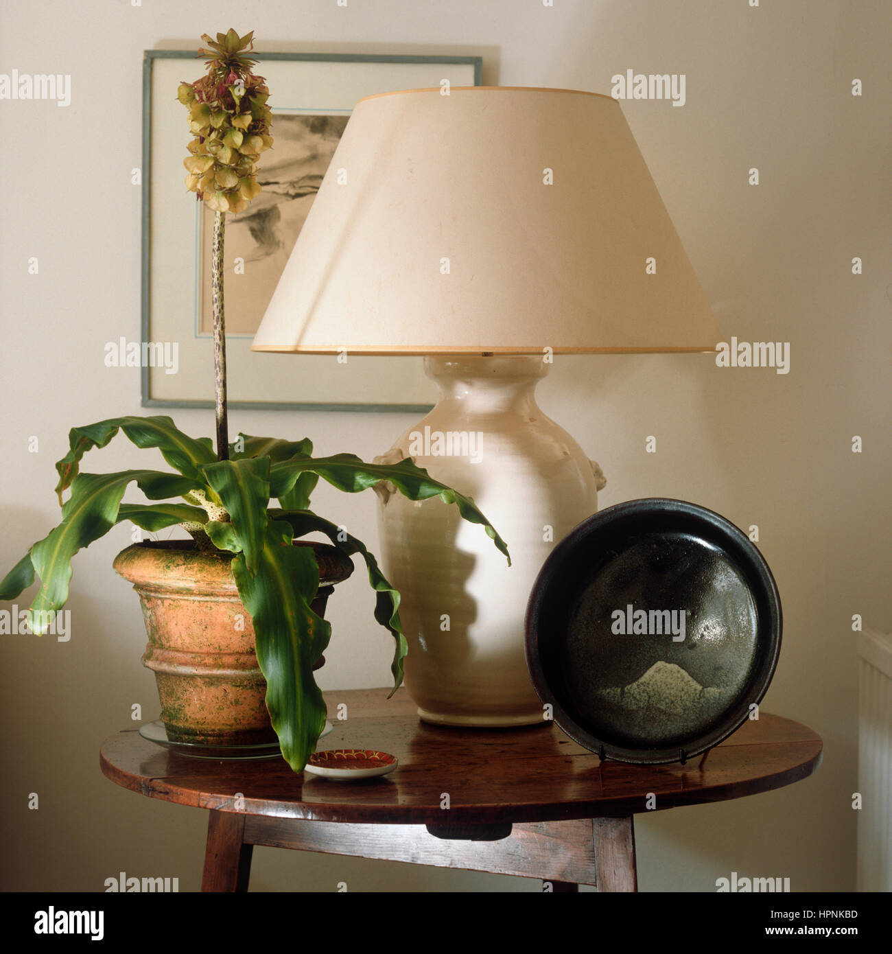 A Side Table With A Pot Plant Table Lamp And Bowl Stock