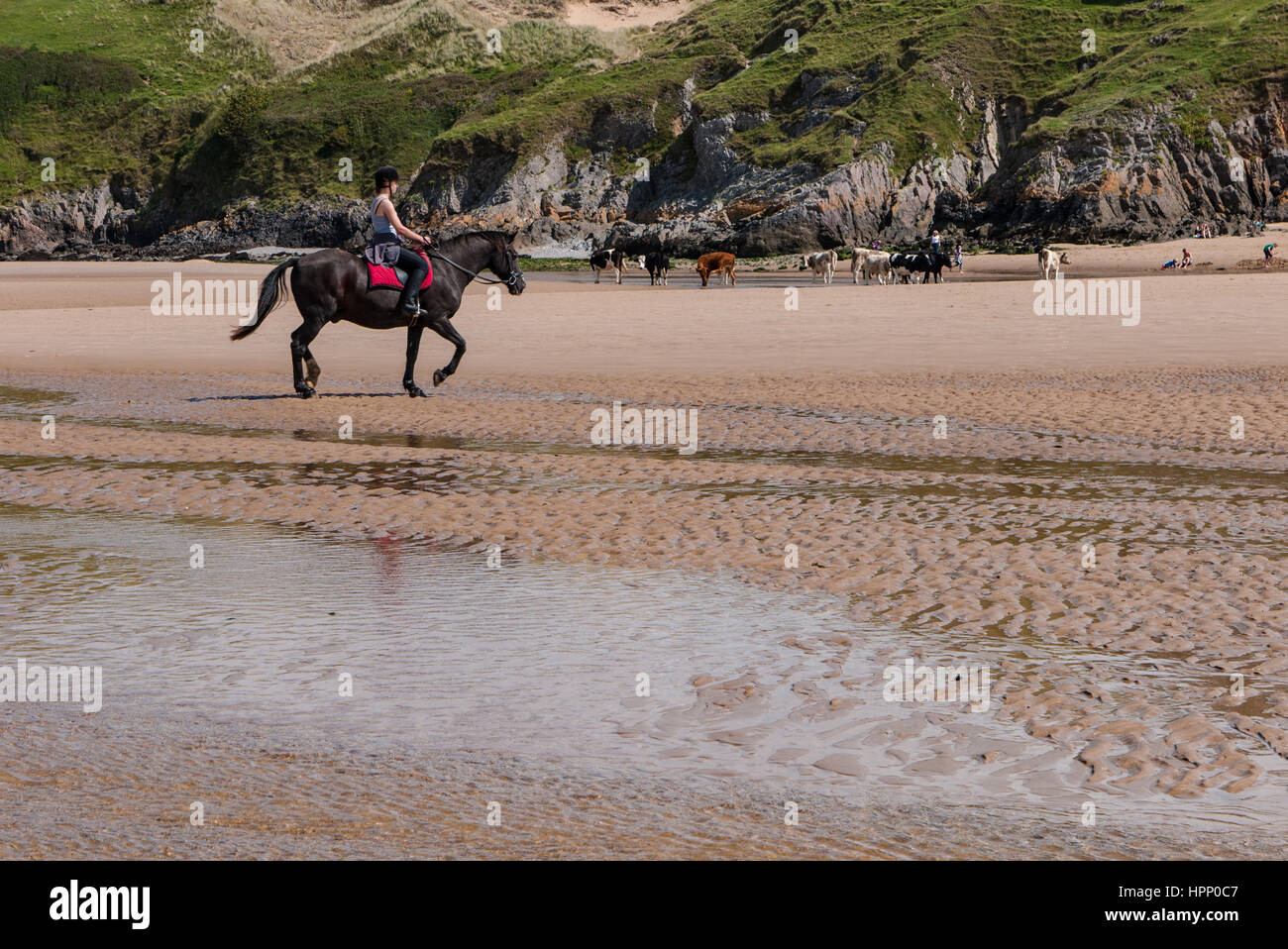 Horse Rider on the beach at Three Cliffs Bay, The Gower, Swansea, Wales. UK - Stock Image