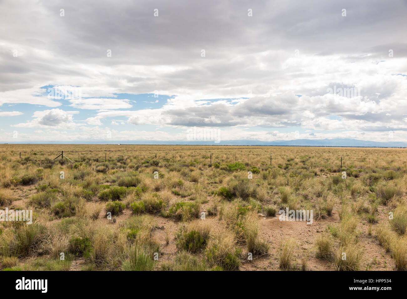 Grass farm field, flat plains, with a partly cloudy sky - Stock Image